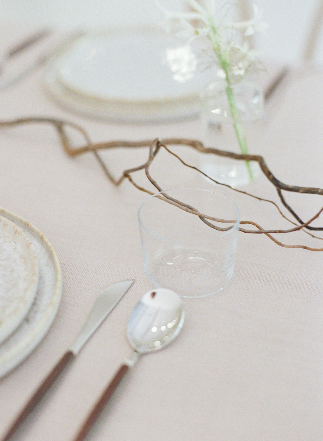 Glass and flatware with decorative branch